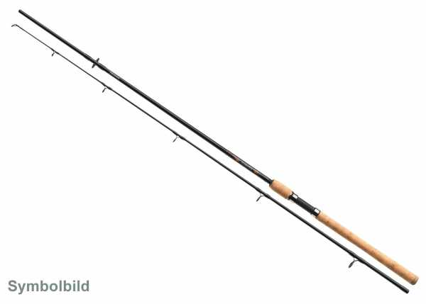Daiwa Sweepfire Sea Trout Meerforellenrute 300cm