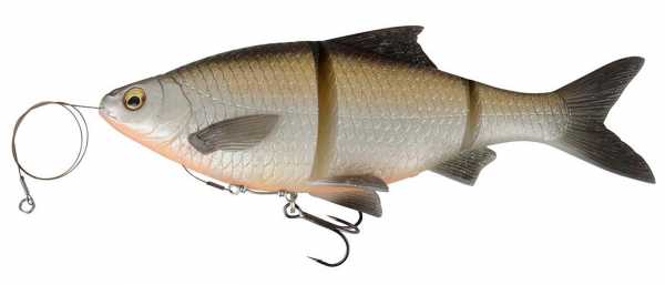Linethru Roach Bream